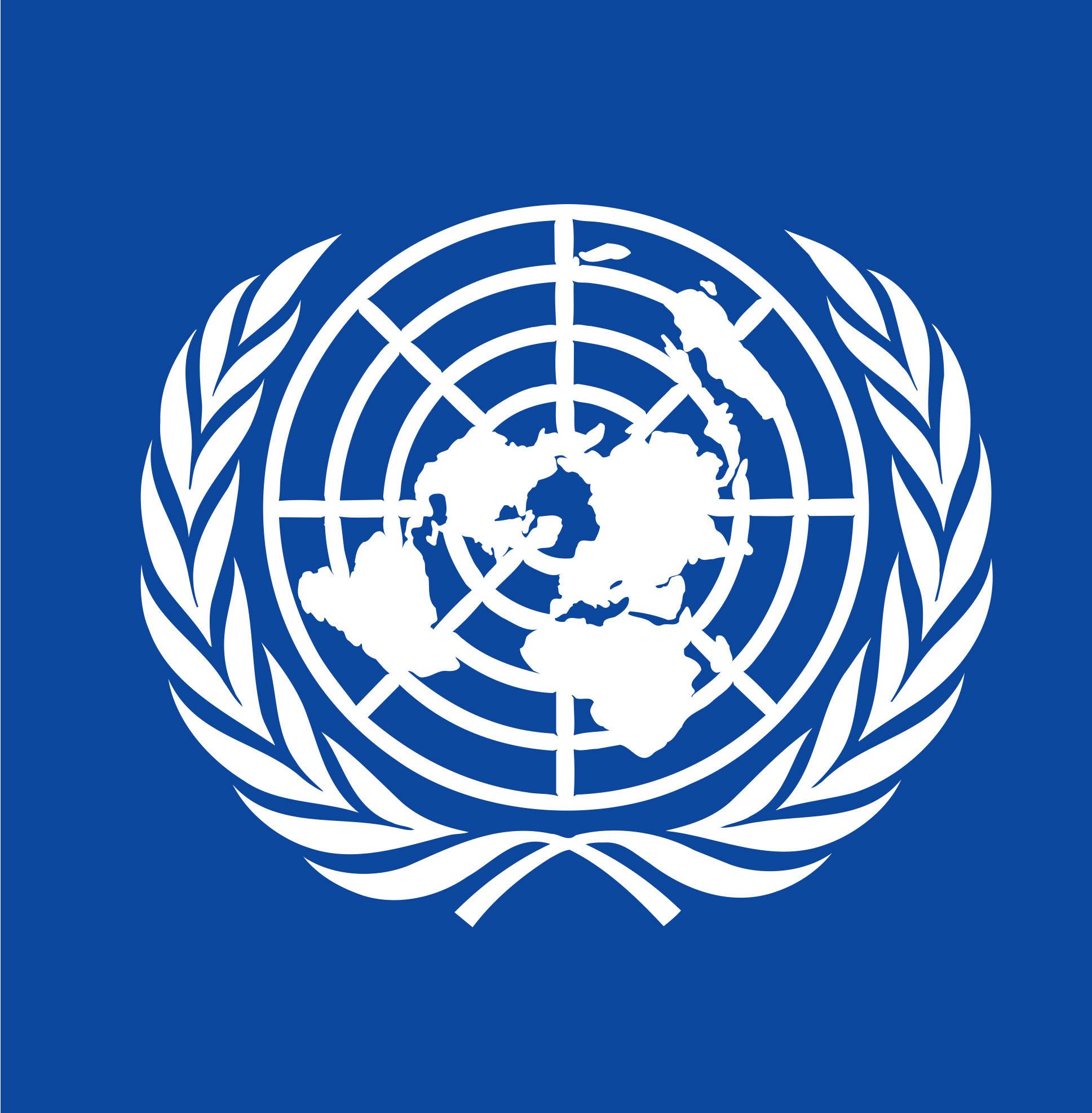 UNDP-ex
